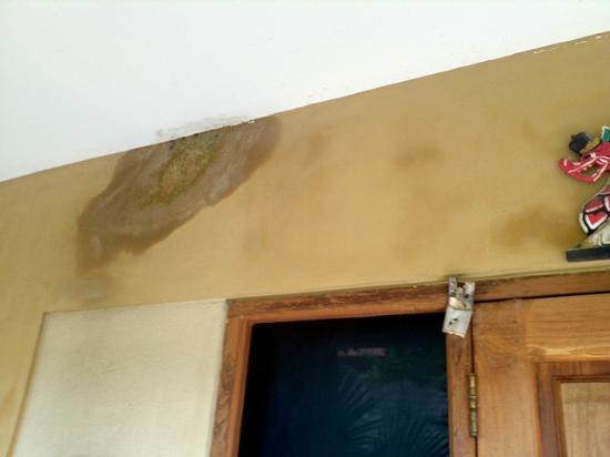 Taman Rosani Hotel & Villa: stains everywhere