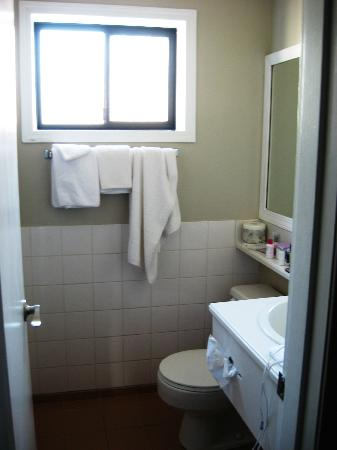 Travelodge Vancouver Lions Gate: Bathroom (shower stall is on left side)