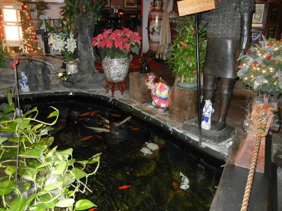 Grace's Fortune Restaurant: Koi Pond