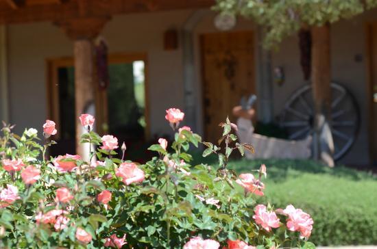 阿杜比莊園住宿加早餐酒店照片