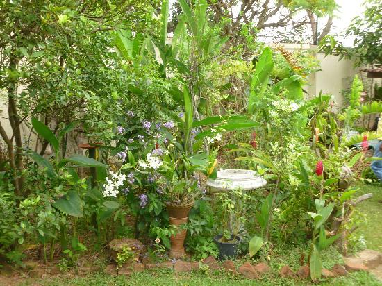 River View Inn : Garden with birds bath