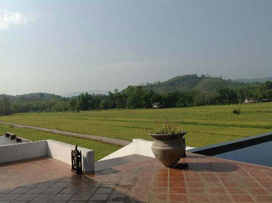 Manee Dheva Resort & Spa: Rice Fields from Room