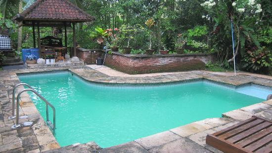 Kebun Indah : Lovely small pool