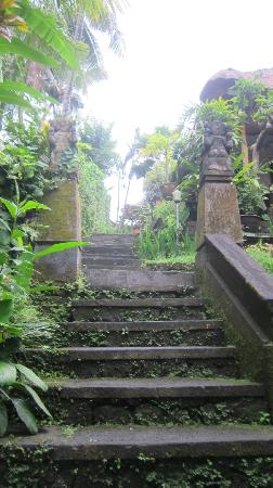 Kebun Indah: Stairs from the pool area leading up to the entrance