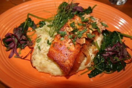 All Natural Salmon at Putah Creek Cafe, Winters CA