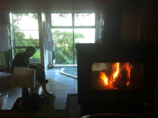Treetops Seaview: Bowerbird Cabin