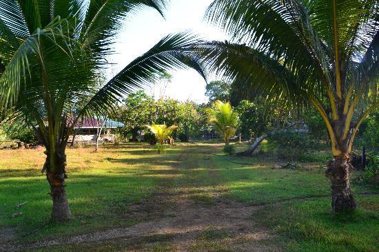 Casa Pequena: Parc menant entourant les habitations