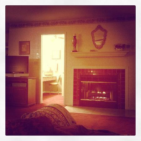 Evening Shade Inn Bed and Breakfast: In-room Fireplace