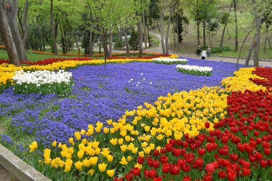 The greenery of Yildiz Park - Yıldız Parkı, İstanbul Resmi ...