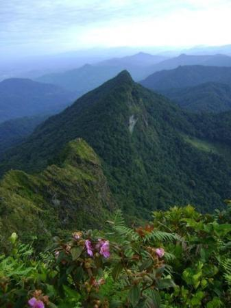 Banjarmasin, Indonesien: Meratus Mountain... It's very beautiful...