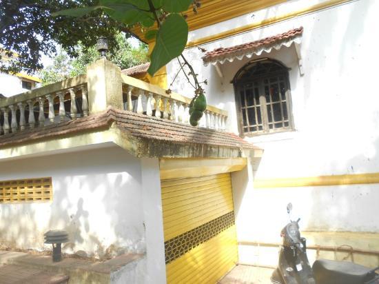 Belle Wista: Enviro Green Resort