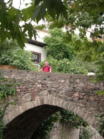 Ayvaz Park Hotel : Alte Brücke in Niksar