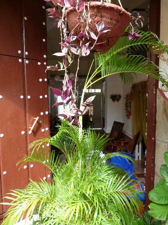 Hostal Remanso de Paz: Un buen lugar cerca de todo en Trinidad