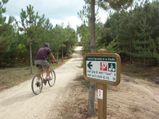 Resid'Azur : Piste cyclable au pied de la résidence.