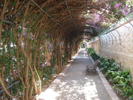 Jardines de monforte valencia aktuelle 2018 lohnt es for Jardines de monforte valencia