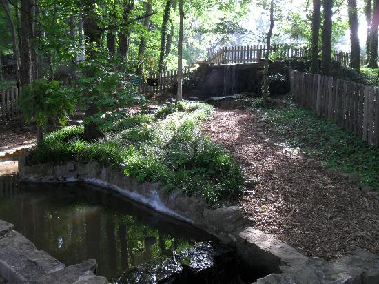 Huntsville, AL: Madison County Nature Trail-Green Mountain