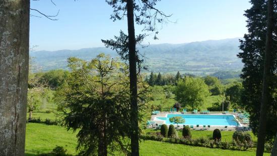 Villa Campestri Olive Oil Resort: Piscine vue de la terrasse de l'hôtel