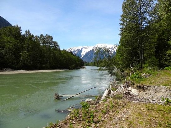 Taku Resort and Marina: Southgate River- Grizzly watching here in Autumn