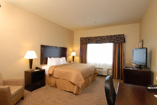 Comfort Inn & Suites: King room