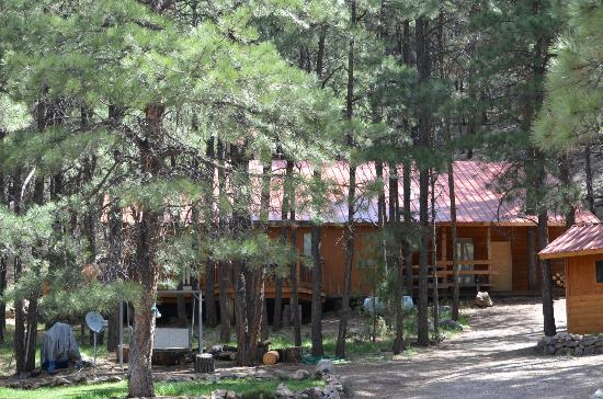 Elk Mountain Lodge : other cabins