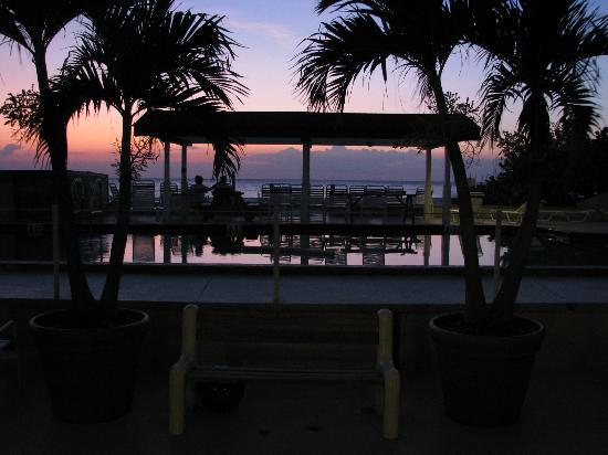 Palm Crest Resort Motel: Pool at sunset