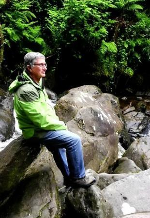 Fern Rock Bed & Breakfast: Grün auf der grünen Insel