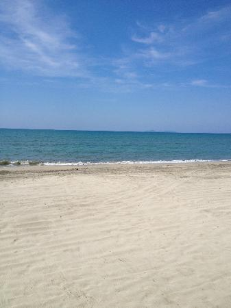 لو ديلفينا بيد آند بريكفاست بار آند جريل هوتل: Beachfront
