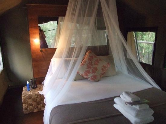 โรงแรมเพเพอร์บาร์คแคมป์: Kookaburra Suite