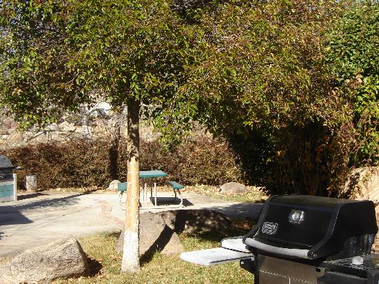 Sierra Gateway Cottages: Private patio areas with propane grills