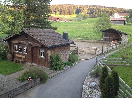 Bären - Das Gästehaus:  Vue de la chambre