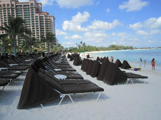 The Cove At Atlantis Autograph Collection Beach