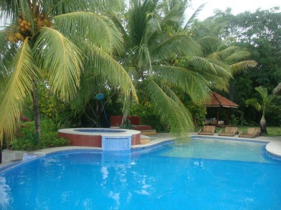 Hotel Vista de Olas : Pool area