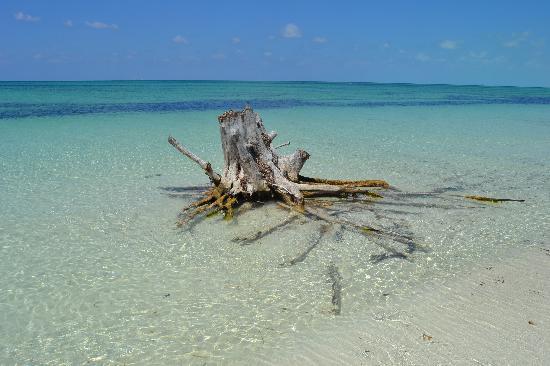 Playa Paraiso: Paraiso 1