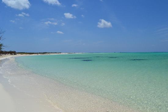 Playa Paraiso: Paraiso 2