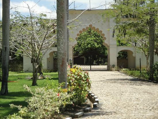 The Palace at Playa Grande: Hotel Grounds