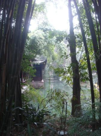 Du Fu Cottage: lake
