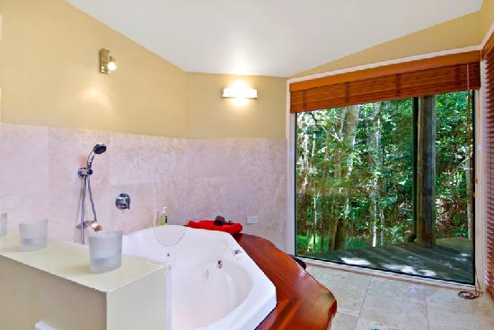 Narrows Escape Rainforest Retreat: Rainforest views from your whirlpool tub!