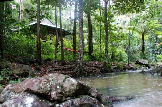 Narrows Escape Rainforest Retreat : Secluded cottages in the rainforest
