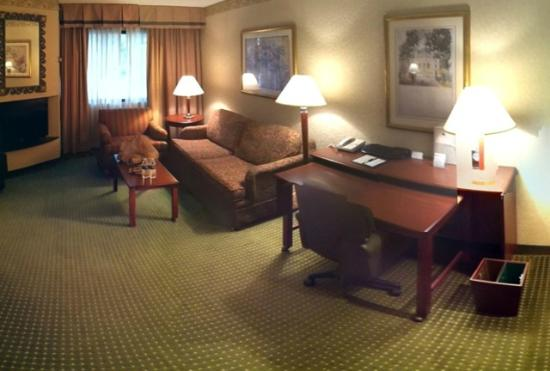 Doubletree Suites by Hilton Hotel Cincinnati - Blue Ash: Living area (microwave/coffee not shown)