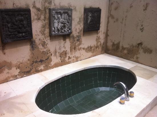 Tamu Seseh: outdoor bath