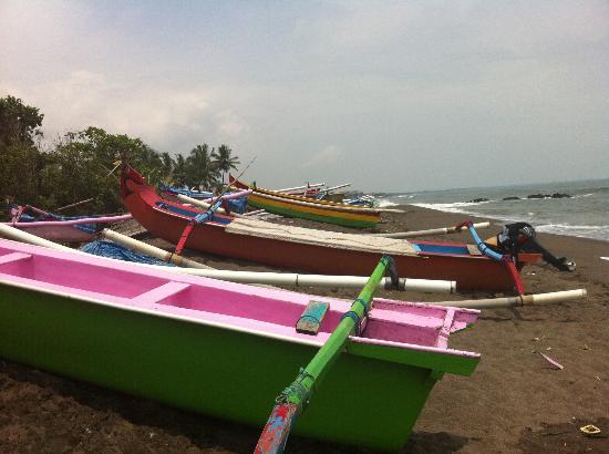 Tamu Seseh: Seseh beach