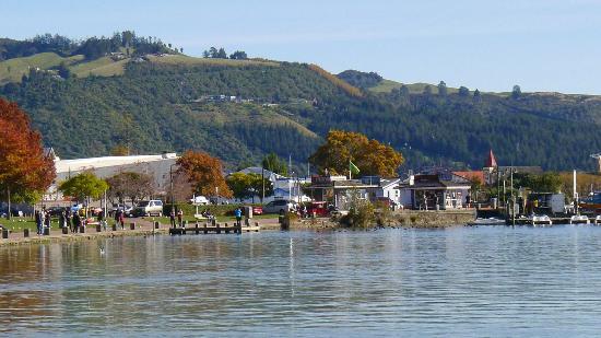 Lake Rotorua (2)