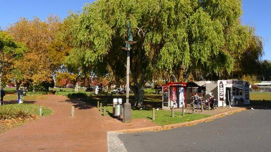 Park near Lake Rotorua