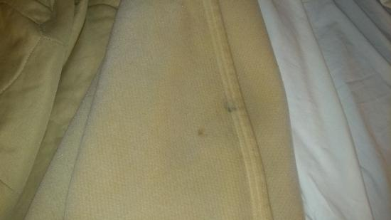 Extended Stay America - Indianapolis - Northwest - I-465: Stained Bedding