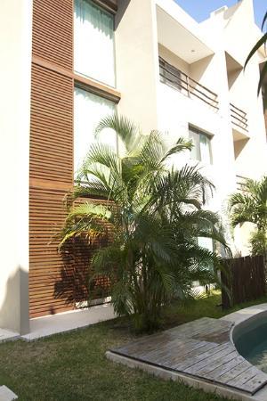 Luna Llena Boutique Hotel: Jardin