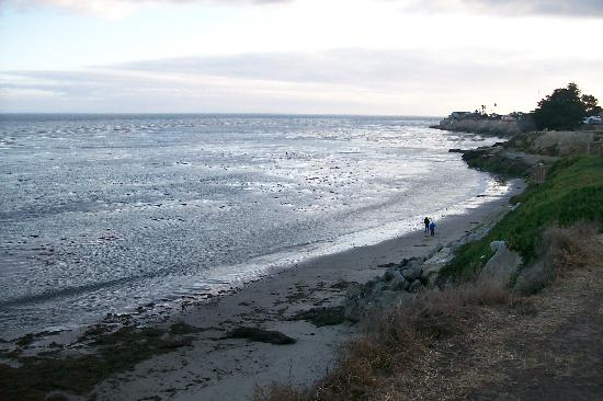 Quality Inn and Suites Capitola By the Sea: Beach from the east