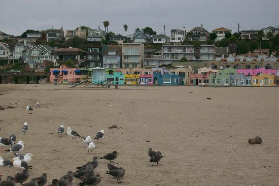 Quality Inn and Suites Capitola By the Sea: More beach