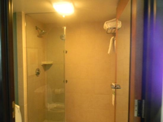 Hyatt Place Bush Intercontinental Airport: Shower only