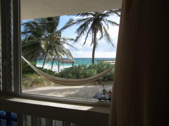 Las Ranitas Eco-boutique Hotel: view from room