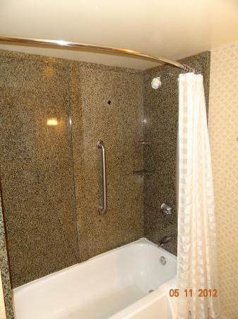 Embassy Suites by Hilton Seattle North Lynnwood: Shower